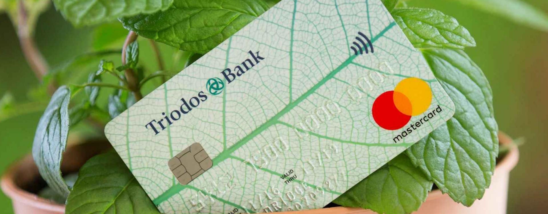 Brands triodos bank 04
