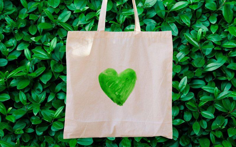 Insights rise conscious consumer